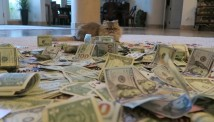 Poker Cat - პოკერის მოთამაშეები რეპ ვიდეოში