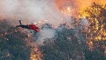 Aussie Millions-ის მასპინძელმა კაზინომ ავსტრალიაში გაჩენილი ხანძრის ჩასაქრობად $5.000.000 გაიღო